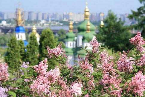 Ботанический сад им. Николая Гришко